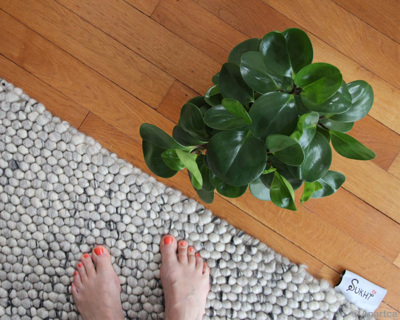 hand knotted feet with red nail polish asian modern rug store